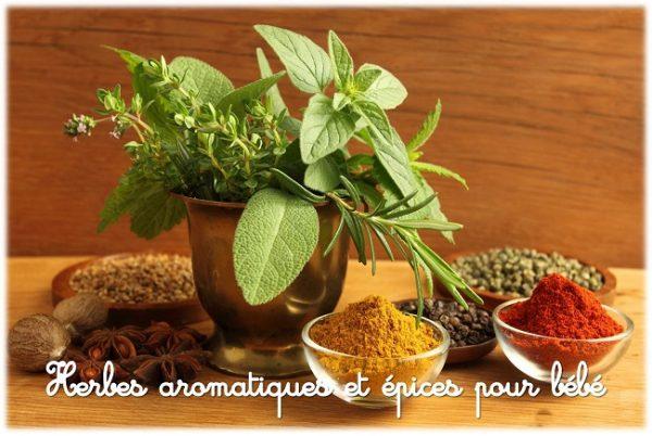 Epices, herbes aromatiques et condiments pour bébé