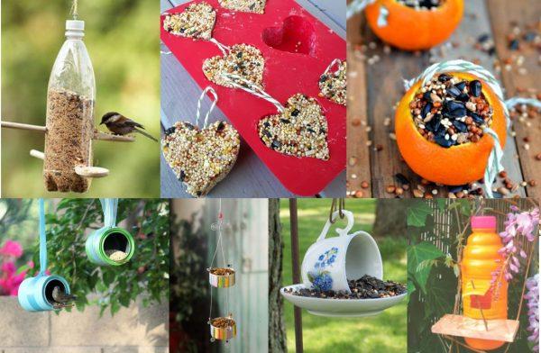 6 idées écolo de mangeoires à oiseaux