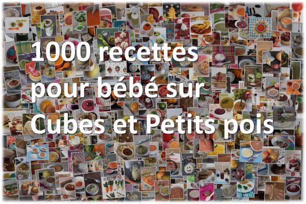1000 recettes pour bébé sur le site de Cubes et Petits pois