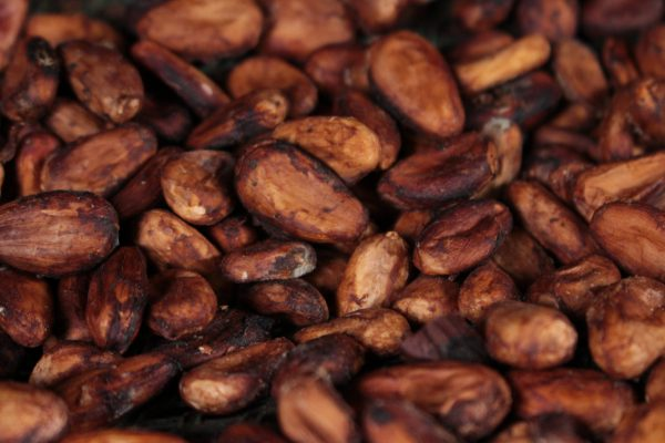 Cacao pour bébé