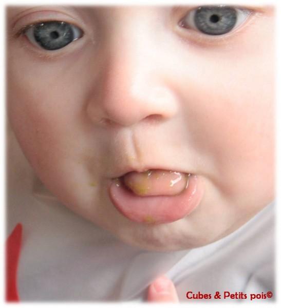 Bébé repousse les aliments avec sa langue