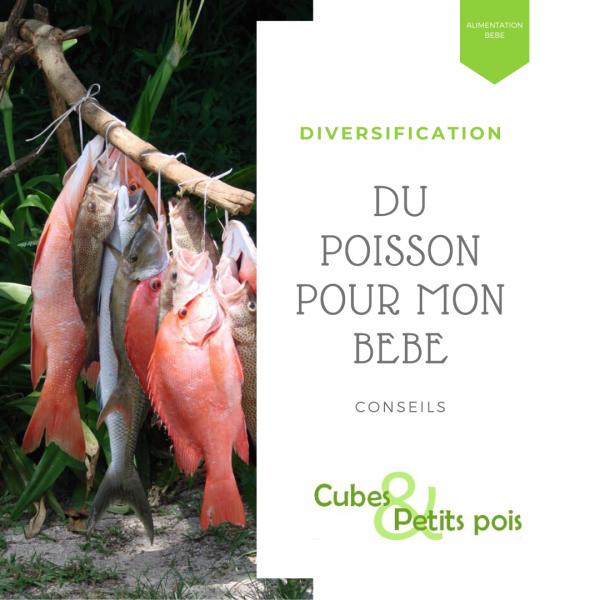 poisson pour bébé diversification