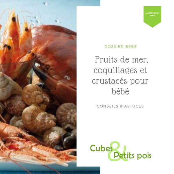 Fruits de mer, coquillages et crustacés pour bébé