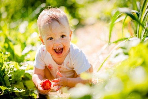 Premiers fruits en diversification menée par l'enfant