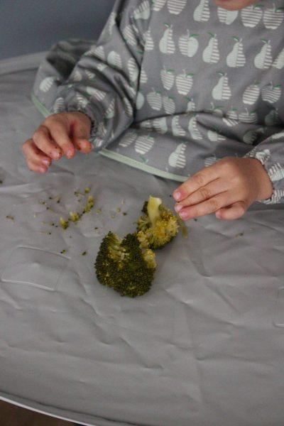 Premiers légumes à proposer à bébé en DME
